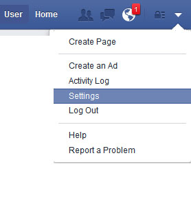 Facebook settings button